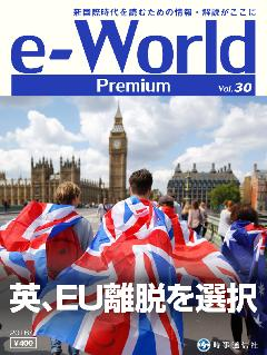 e-World Premium vol.30