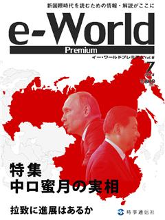 e-World Premium vol.6