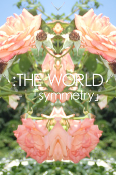 :THE WORLD ‐ 「symmetry」 #flowers of june